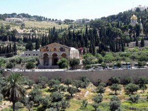 mount-of-olives-12-30